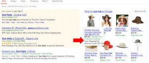 Google Shopping Promotion Free Delivery