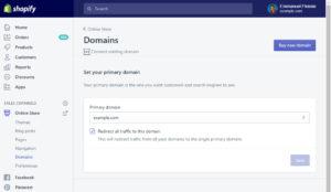 Shopify Set Domain