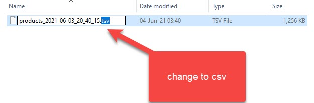 Change Filename To CSV